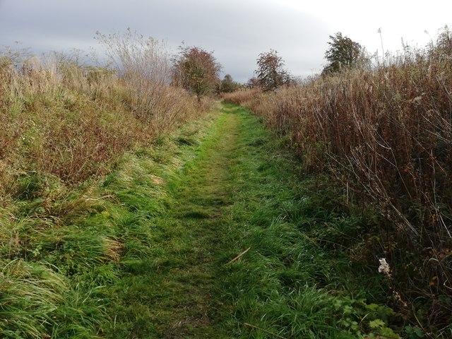 Wannie Line Walk