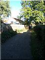 TM4198 : Church Lane, Thurlton by Adrian Cable