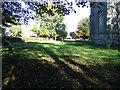 TM4198 : All Saints Churchyard, Thurlton by Adrian Cable