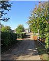 TL4151 : Haslingfield: Penn Farm Studios by John Sutton