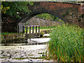 SD7908 : Manchester, Bolton and Bury Canal, Withins Bridge by David Dixon