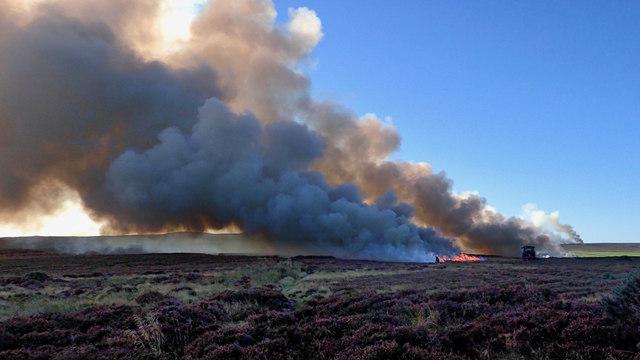 Moor burning, Stanghow Moor