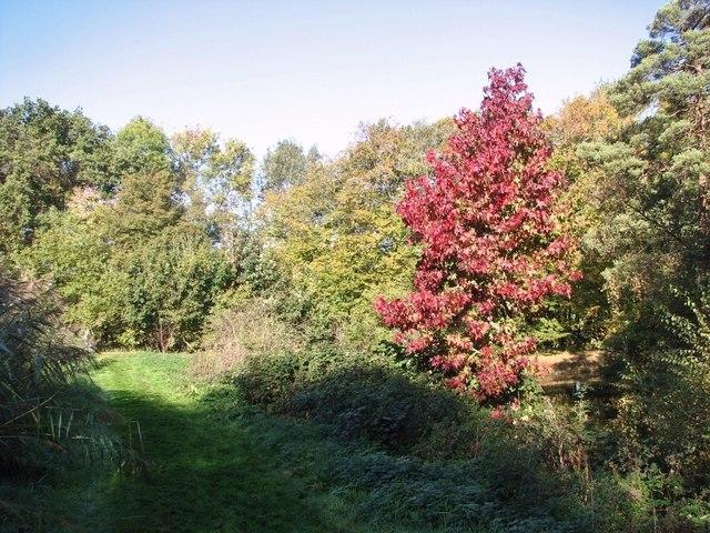 The Framingham Arboretum