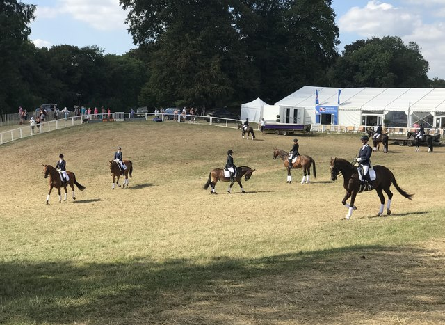 Dressage warm-up area at Gatcombe Horse Trials