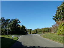 TM4098 : Loddon Road, Norton Subcourse by Adrian Cable