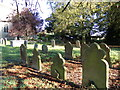 TM4098 : St. Mary & St. Margaret's Churchyard by Adrian Cable
