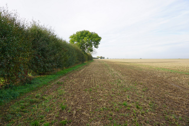 Path leading to Oldfield Lane by Ian S