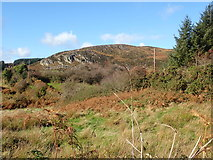 H9917 : Rock outcrops on Mullaghbawn (Mullaghbane) Mountain by Eric Jones
