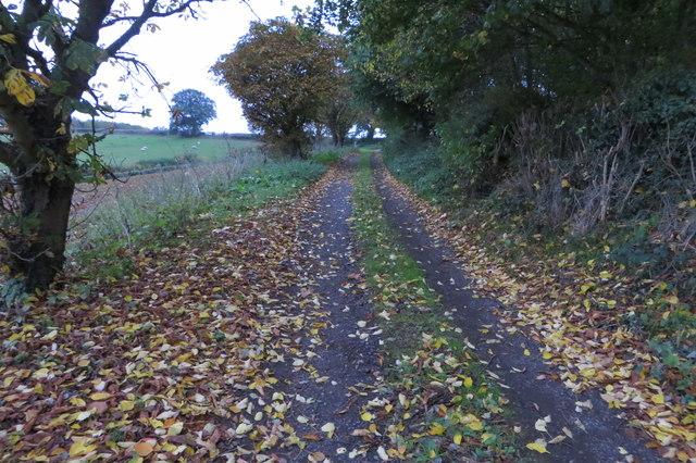Drive from Littliff Farm