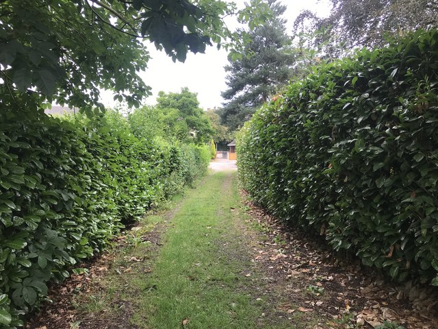 Podmore Lane