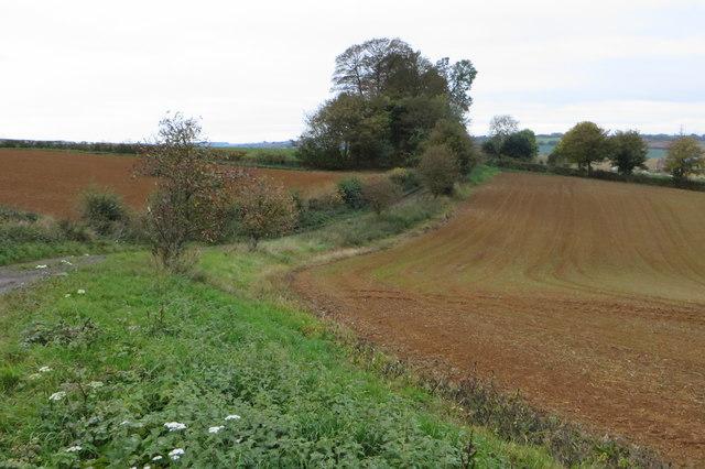 Drive to Littliff Farm