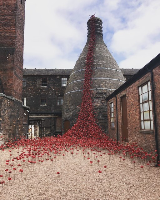 Weeping Window poppies at Middleport Pottery