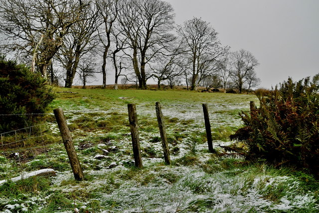 A light dusting of snow, Faccary