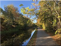 SE2833 : Autumn colours beside the Leeds & Liverpool Canal by David Robinson