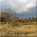 NH5056 : Pole in a field by Loch Ussie by valenta
