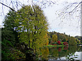 ST7734 : View east across the lake, Stourhead by Brian Robert Marshall