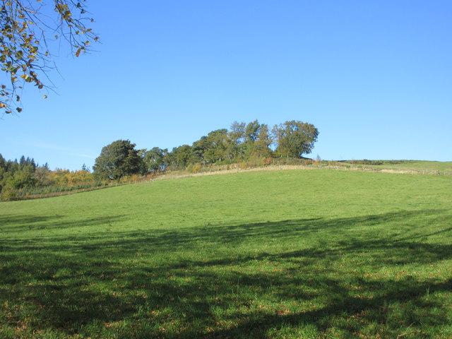Hillside near Ledlanet