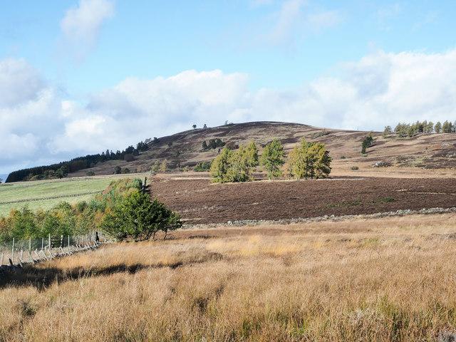 Moorland above fields