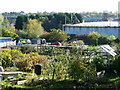 SK3771 : Allotments by the old gasworks, Chesterfield by Christine Johnstone