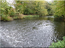 TQ0481 : Weir on the River Colne by Marathon