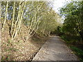 TQ0580 : Beeches Way approaching West Drayton by Marathon