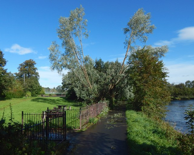 Storm damage at Millburn Gardens