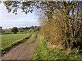 SO8498 : Woodside Path by Gordon Griffiths