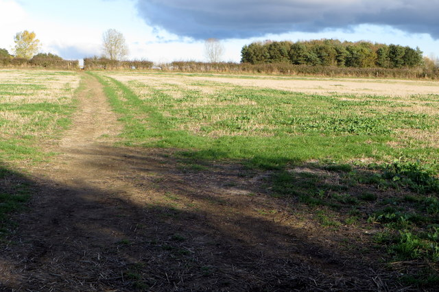 Footpath and Churchill copse