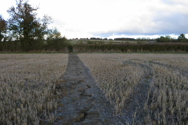 Footpath to Collingtree