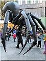 SJ3490 : Spider man by Dr Zoë Hoare