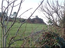 J0016 : Jackson's Folly viewed from the Bog Road by Eric Jones