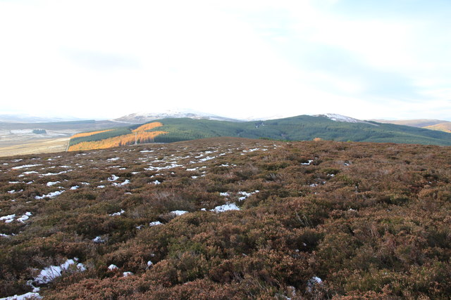 View SW from the slopes of Meikle Balloch Hill