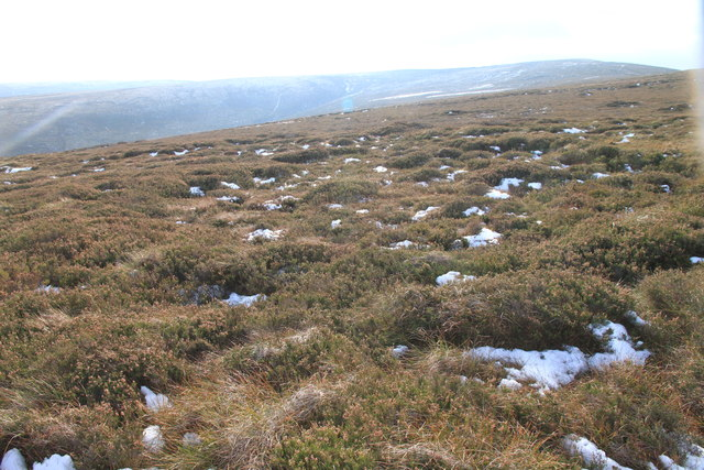 Moorland on the Hill of Mackalea