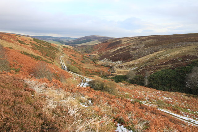 Vivid autumn colours in Glen Markie