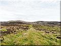 NO0863 : Low grassed rib near to summit of Menachban by Trevor Littlewood