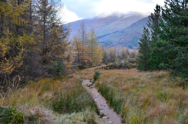 West Highland Way above Crianlarich