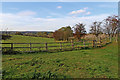 SO8681 : Pasture and footpath east of Caunsall in Worcestershire by Roger  Kidd