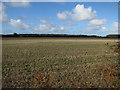 TG1640 : Stubble field by Bennington's Lane by Hugh Venables