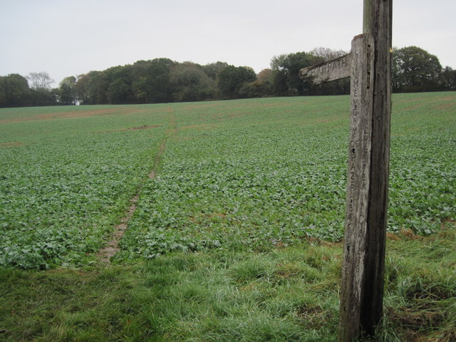 Footpath from Stakes Farm towards Ashton