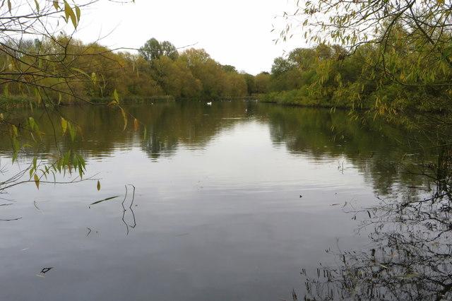 Shelfleys Lake
