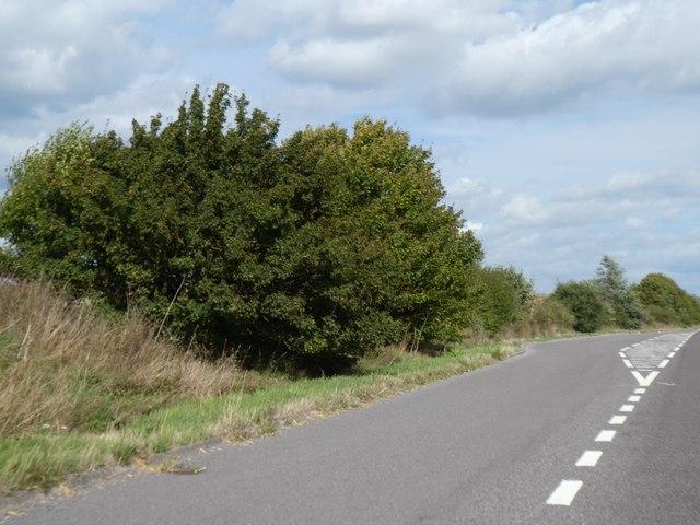 Lay-by by A10 near Meldreth
