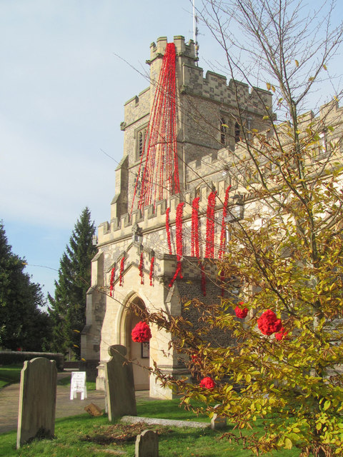 Poppies cascade down the church tower at Tring