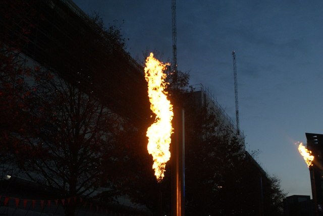 View of a fire torch in the Fire Garden of the Light Up the Night event #5