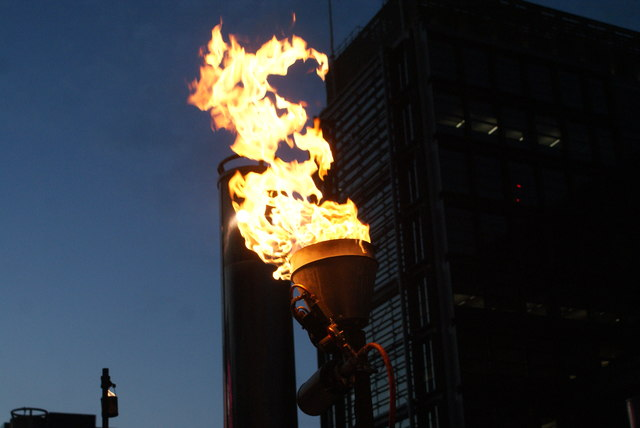 View of a fire torch in the Fire Garden of the Light Up the Night event #6