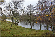 NJ0224 : A Glimpse of the River Spey by Anne Burgess