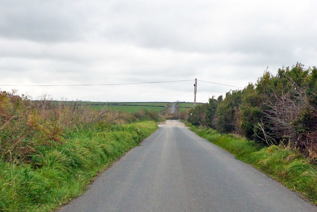 Roman road towards Eggardon Hill