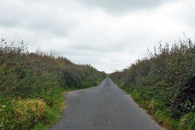 Roman road towards Eggardon Hill