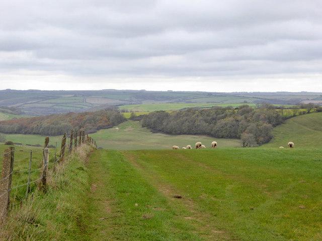 View NE from Roman road