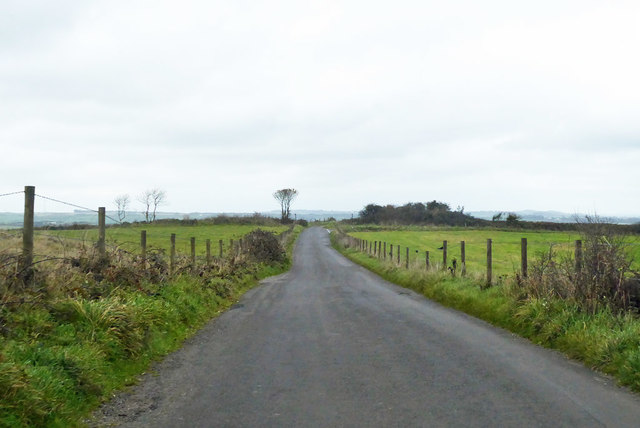 Road heading north on Eggardon Hill