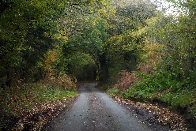 Lane towards Hooke